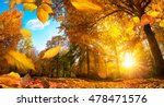 Golden Autumn Scene In A Park ...