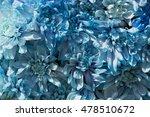 beautiful blue chrysanthemum... | Shutterstock . vector #478510672