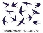 swallow silhouette set | Shutterstock . vector #478603972