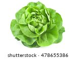 Fresh Lettuce Isolated On Whit...