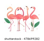 flamingos in the form of... | Shutterstock .eps vector #478699282