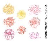 set of flowers hand draw | Shutterstock .eps vector #478711015