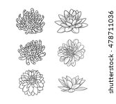 set of flowers hand draw | Shutterstock .eps vector #478711036