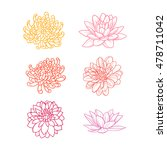 set of flowers hand draw | Shutterstock .eps vector #478711042