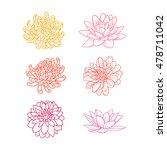 set of flowers hand draw | Shutterstock .eps vector #478711042