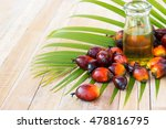 Commercial Palm Oil Cultivation....