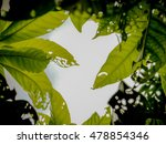 green leaf pattern on the... | Shutterstock . vector #478854346