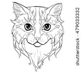 cat head. hand drawn coloring... | Shutterstock .eps vector #479033332