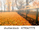 Foggy Autumn Landscape  ...