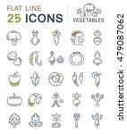 set vector line icons in flat... | Shutterstock .eps vector #479087062