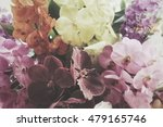 colurful orchid | Shutterstock . vector #479165746