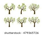set of summer trees. vector... | Shutterstock .eps vector #479365726