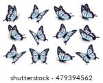 Stock vector set of blue butterflies flying in different directions vector 479394562