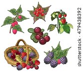 Ripe Garden Berries Isolated O...