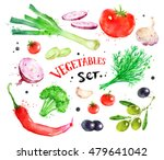 hand painted watercolor... | Shutterstock . vector #479641042