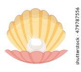 pearl in a shell illustration... | Shutterstock . vector #479787556