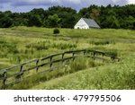 Overgrown Pastureland With...
