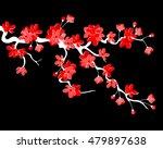 vector illustration. branch of... | Shutterstock .eps vector #479897638