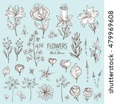 vector set  floral elements....   Shutterstock .eps vector #479969608
