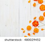 Orange Summer Flowers On White...