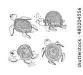cartoon turtle. vector... | Shutterstock .eps vector #480204556