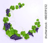 grapes with leaves background | Shutterstock . vector #480359152