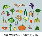 set of cartoon colorful  fruit... | Shutterstock .eps vector #480441946