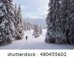 Guy Walking In Snowshoes In Th...