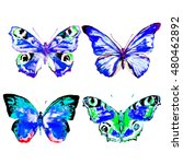 butterfly watercolor  isolated... | Shutterstock . vector #480462892