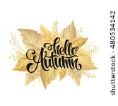 autumn sale lettering orange ... | Shutterstock .eps vector #480534142