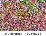 beautiful pink flowers | Shutterstock . vector #480548398