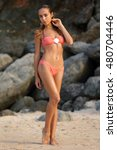 young slim sexy girl in a...   Shutterstock . vector #480704446