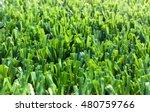 portion of the synthetic turf... | Shutterstock . vector #480759766