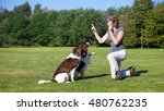 Stock photo woman training her dogs with a whistle 480762235