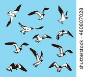 hand drawn flying seagulls.... | Shutterstock .eps vector #480807028