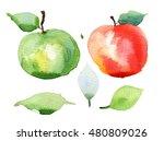 red apple  green apple.... | Shutterstock . vector #480809026
