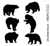 Bear Silhouette Animal  Art...