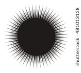 black sea urchin arbacia lixula ... | Shutterstock .eps vector #481013128