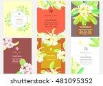 set of flowers frangipani... | Shutterstock .eps vector #481095352