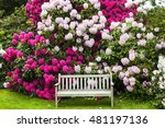 Garden With Rhododendrons And...