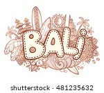 henna colors vector bali sign... | Shutterstock .eps vector #481235632