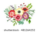 bouquet of flowers and leaves... | Shutterstock . vector #481264252