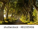 a road runs through the dark... | Shutterstock . vector #481335406