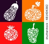 illustrations of vegetables... | Shutterstock . vector #481404382