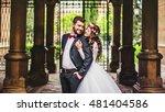 romantic groom hugging... | Shutterstock . vector #481404586