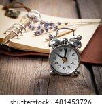 vintage grunge still life with... | Shutterstock . vector #481453726