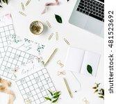 wedding planner schedule... | Shutterstock . vector #481523692