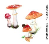Watercolor Set Of Fly Agaric...