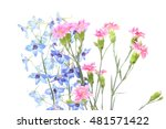 delphinium and carnation in a... | Shutterstock . vector #481571422