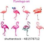 Flamingo Illustration  Flaming...